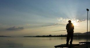 Fábula: El pescador y el banquero.